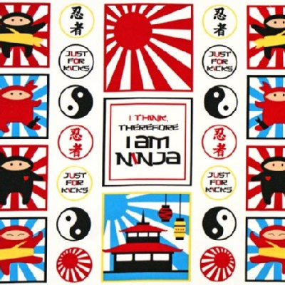 Robert Kaufman Fabrics - I Am Ninja - Panel in Primary