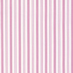 Free Spirit - Sadies Dance Card - Stripes in Pink
